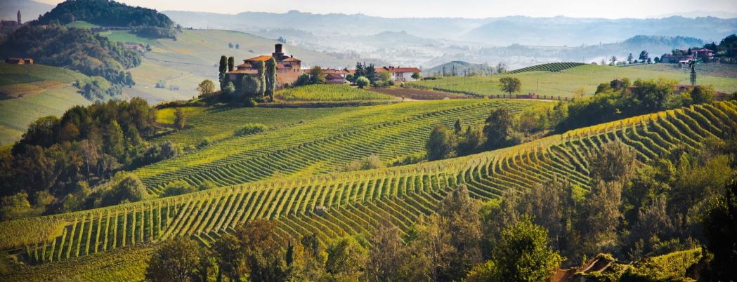 <blockquote><h3>Piedmont Region Langhe area in Asti</h3>Renown area of wines such as Barolo, Moscato d'Asti, Spumante d'Asti, and Barbera d'Asti</blockquote>
